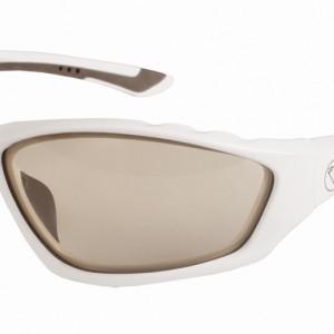 e1009w snoek glasses